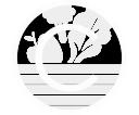 logo_nwslttr
